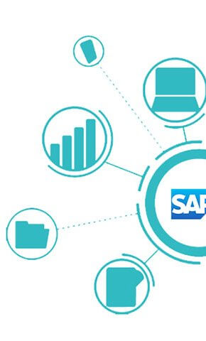 implement sap erp